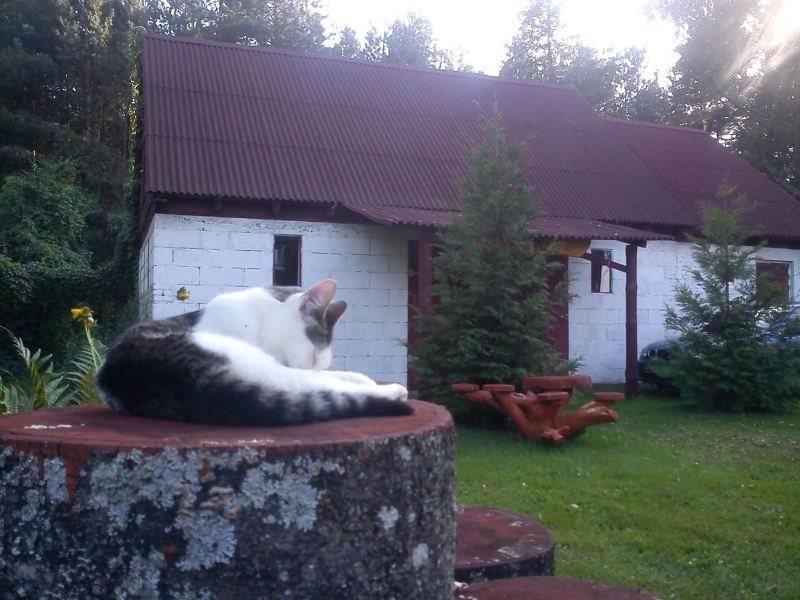Sala kominkowa - widok z zewnątrz