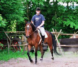 Agroturystyka - konie