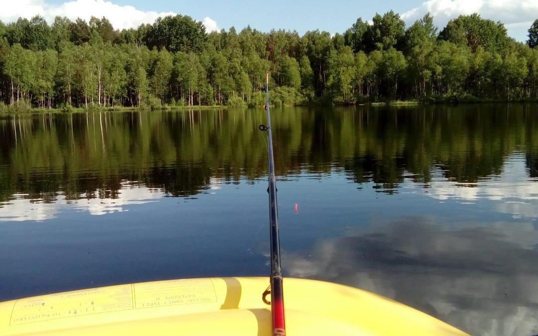 Wędkarstwo Olsztyn – łowisko w okolicach Olsztyna – Agroturystyka dla wędkarzy